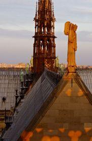 Sunset on Notre Dame, Paris, France