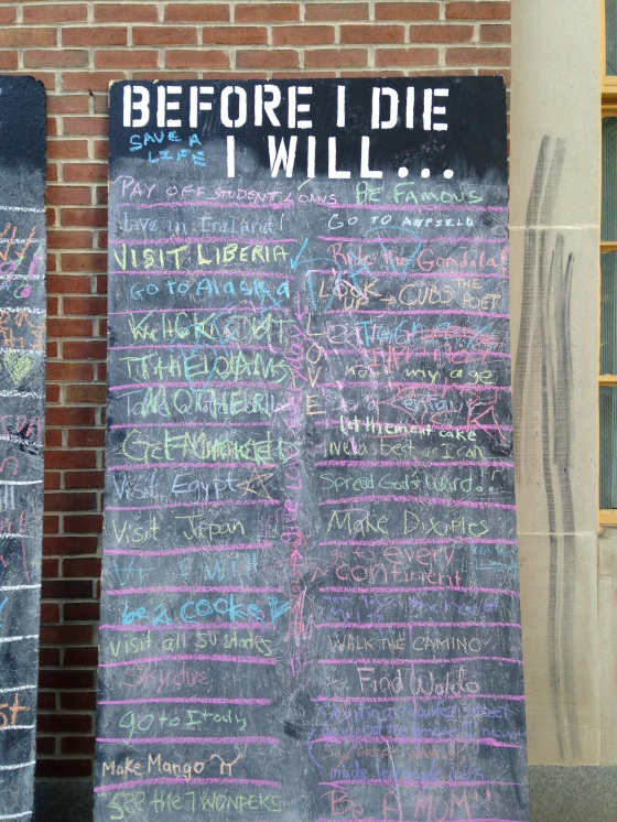 Before I Die I Will...