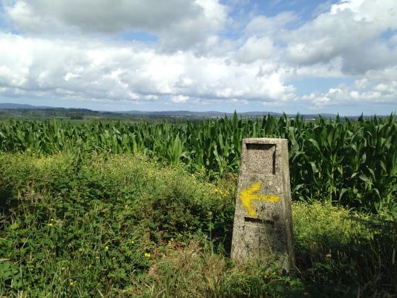 Yellow arrow on the Camino