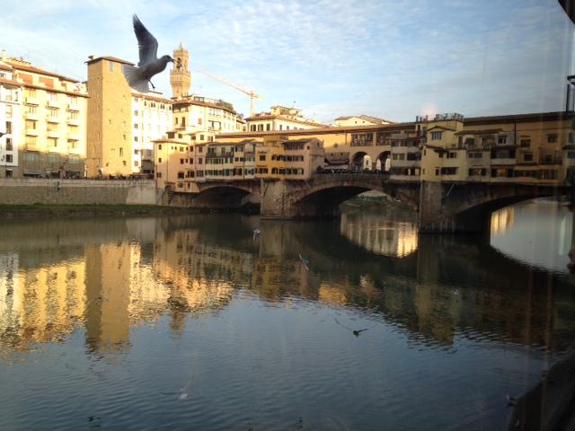 seagull and ponte vecchio
