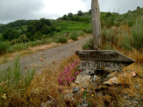 Sign on Dragonte route, Camino Frances