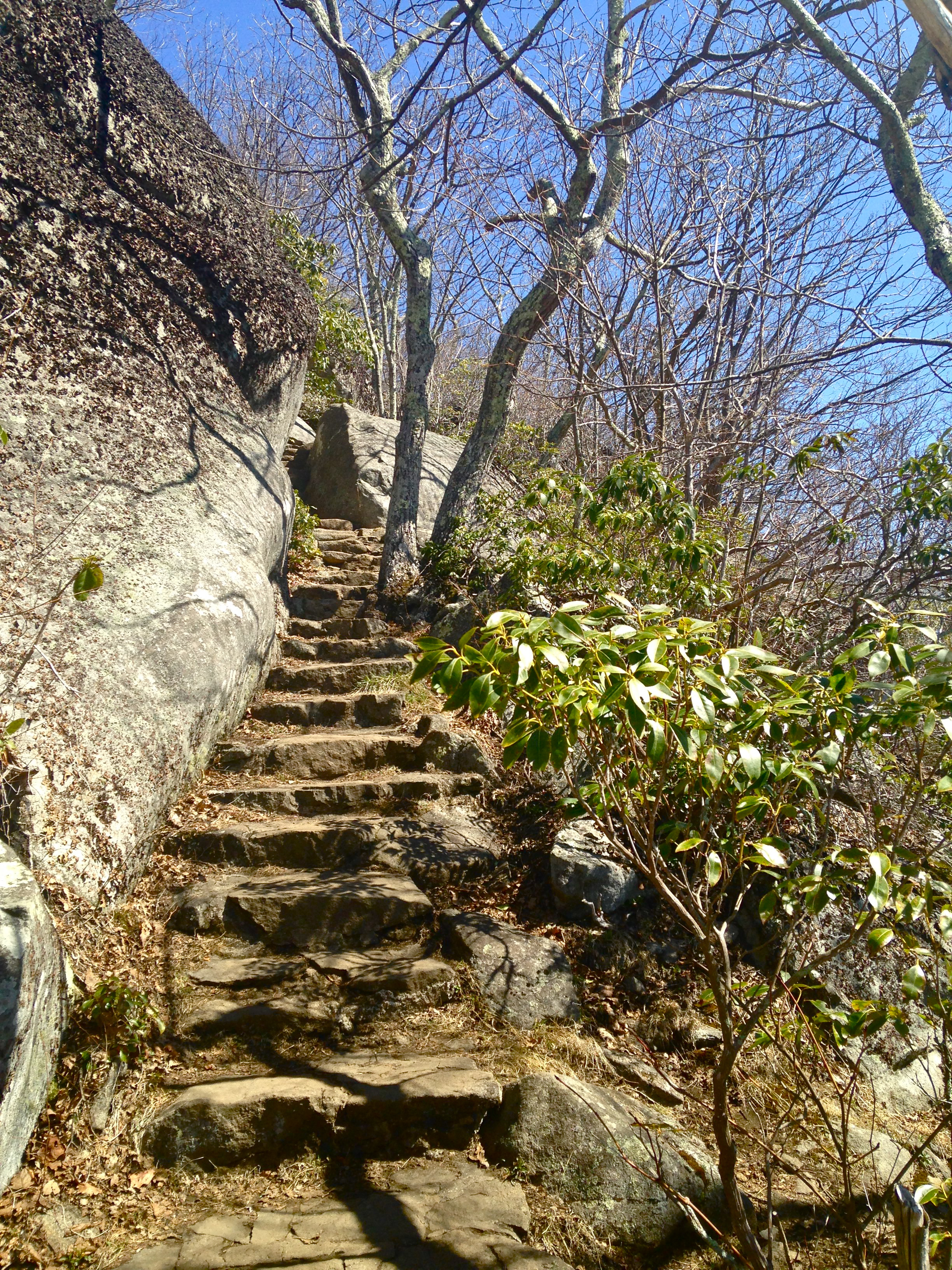 Path up Sharp Top, Virginia
