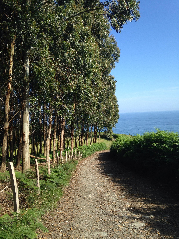 Camino-del-Norte-Spain